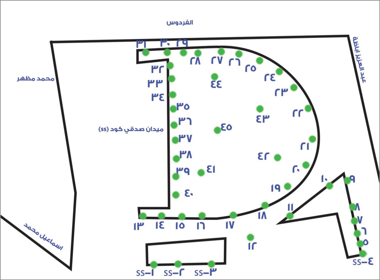 رسم توضيحي للأشجار التي تم إزالتها في ميدان صدقي بالزمالك / منطقتي