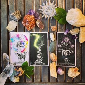 Book a Reading! – Mantis Tarot
