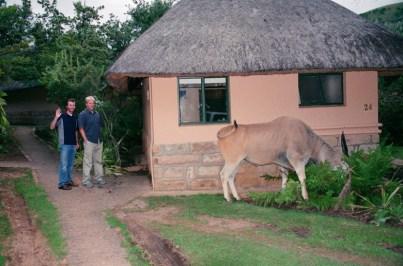 Drakensburg 3