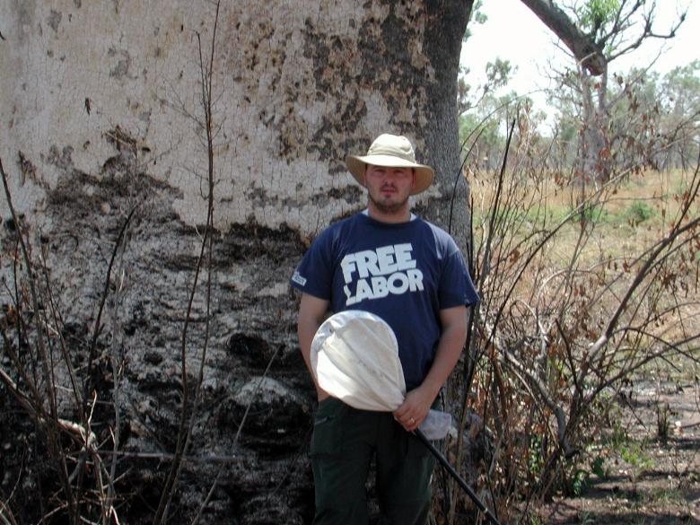 Heath big tree2