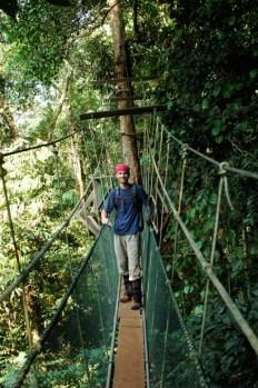 Mulu Canopy Walk5