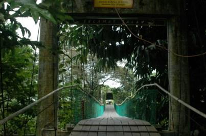 Mulu Entrance