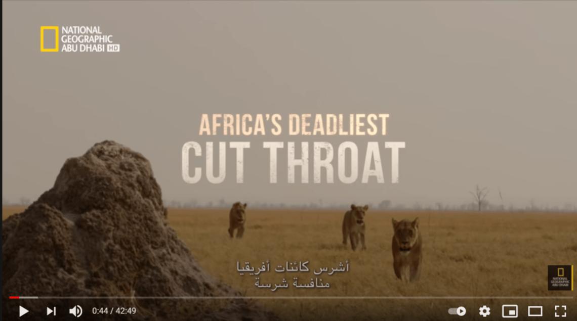 أشرس كائنات أفريقيا وافضل فيديو على الاطلاق لناشونال جيوغرافيك