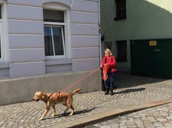 Mantrailingseminar in Radeburg-Gruppenfoto