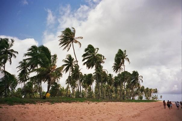 Praia na Bahia, ao norte de Salvador. Foto Aninha Gonçalves