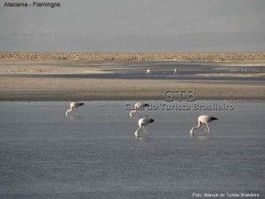 Final de tarde no Atacama