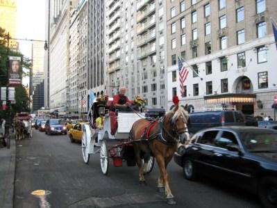 Passeio de carruagem no Central Park, foto Barão