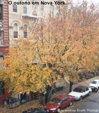 Nova York (New York), East Village, foto Andriea Thomas