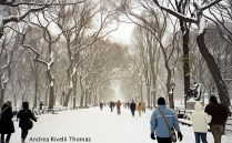 Central Park, Manhattan, New York, inverno
