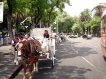 Parque em Palermo, Buenos Aires