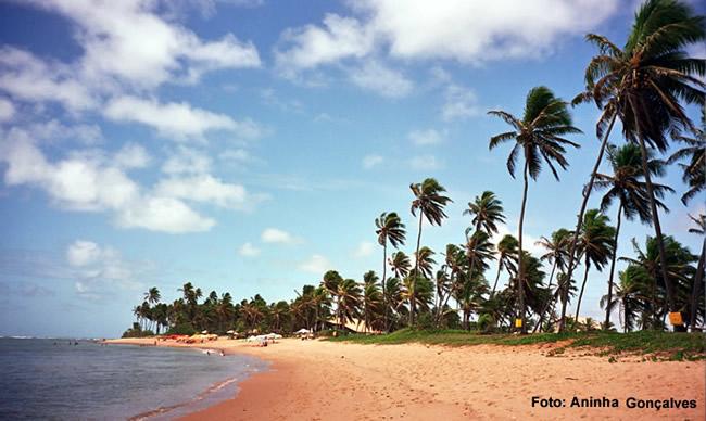 Praia do Forte, na Bahia, um point turístico