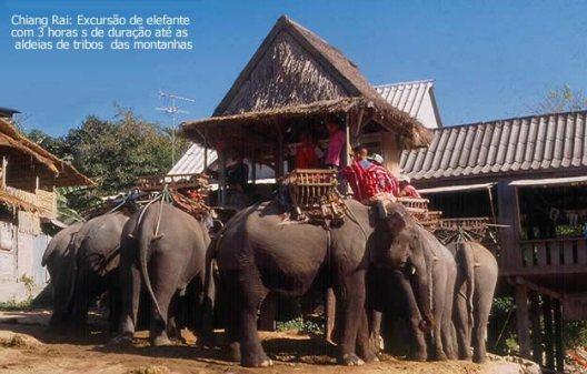 Safari de elefante pelas montanhas do norte da Tailândia