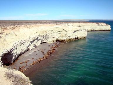 Reserva de vida marnha em Puerto Madryn, Argentina