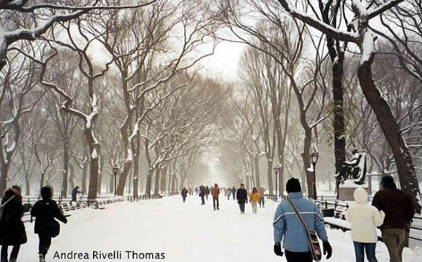Central Park no inverno, em Manhattan, New York, foto Andreia Thomas