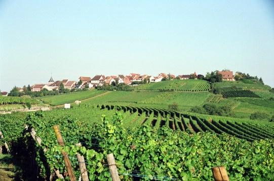 Rota dos Vinhos, Alsácia, França