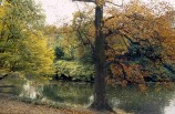 Paris, os parques no outono