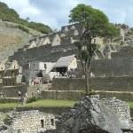 Setor residencial em Machu Picchu