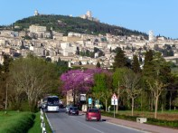 Assis, Umbria