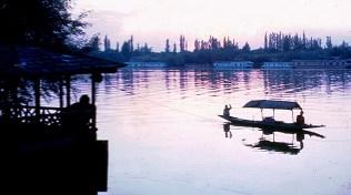 Yak no norte da Índia