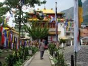 Cultura tibetana no norte da Índia