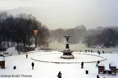 Central Park, Nova York, inverno