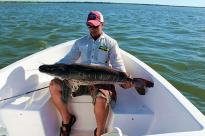 Pesca no rio Paraná, peixes enormes
