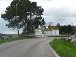albero-650-estrada2-0811