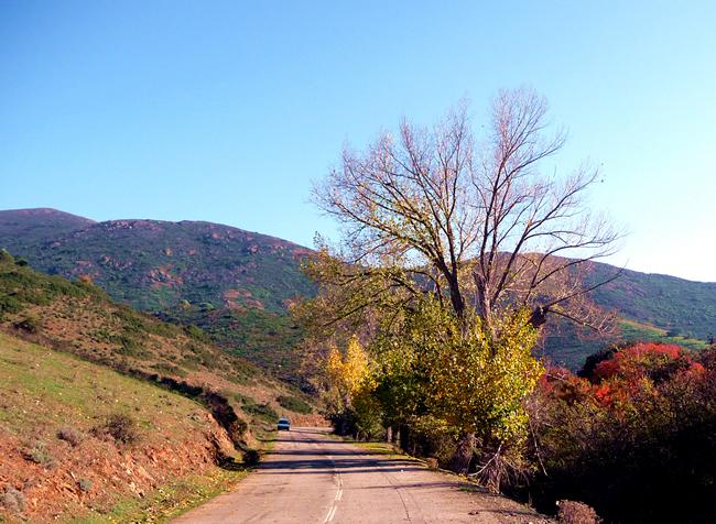 Montanhas da Córsega no outono