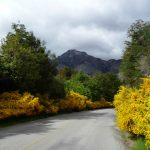 Estrada na Patagônia Andina, Argentina