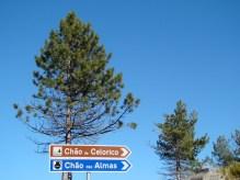 Placas rodoviárias em Portugal