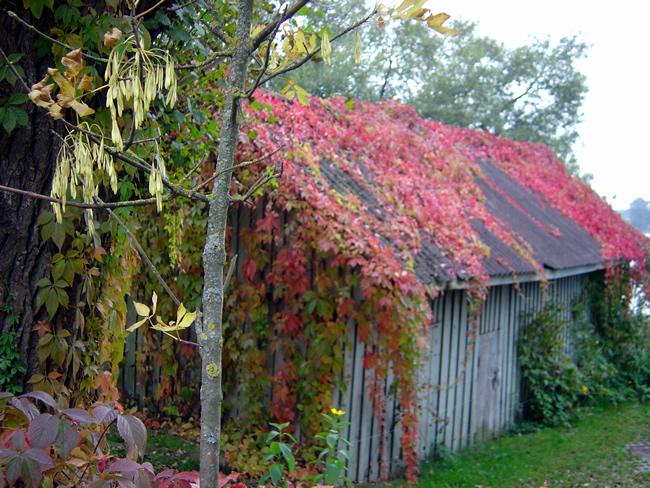 Trakai, na Lituânia, no outono