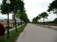 Lucca, alto das muralhas