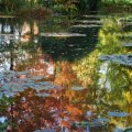 Reflexos do outono, Giverny - Photo Ariane Cauderlier