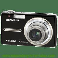 Olympus FE-290 Manual de usuario en PDF Español