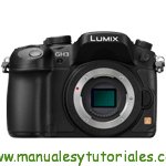 Panasonic LumixG GH3 Manual de usuario PDF español