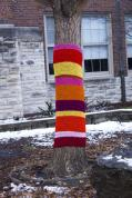 A completed yarn-bombed tree in duPont Manual's courtyard. Photo by Noelle Pouzar.