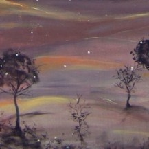 paysage arbres nuit