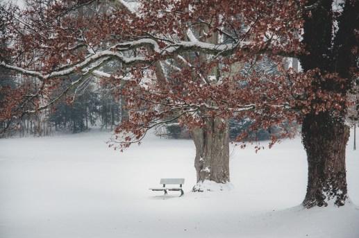 Winter in Tutzing