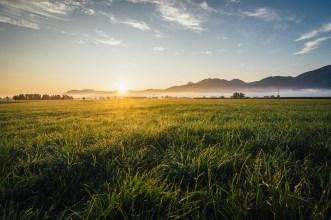 Sonnenaufgang in Kochel im Sommer