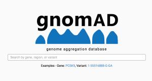 gnomAD logo