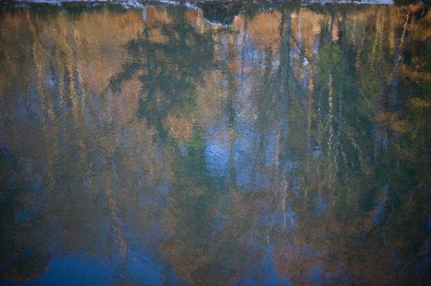 Berner Dählhölzli – Herbstliche Bäume spiegeln sich im Wasser