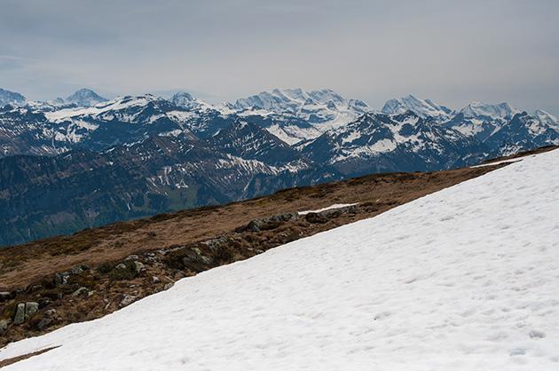 Rest-Schnee auf dem Niederhorn; im Hintergrund die Blümlisalp.