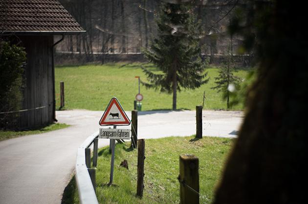 Langsam fahren, Kühe! Warnschild bei einem Bauernhof in der Nähe vom «Fähribeizli» bei Muri