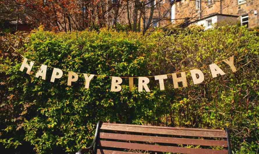 Happy Second Birthday