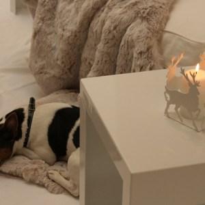 Kerzenhalter 4er Hirsche