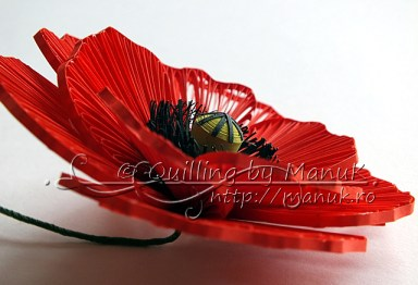Quilled Poppy Side view