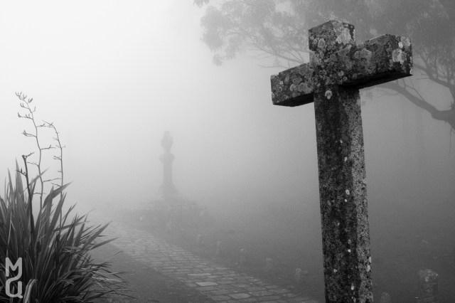 Composicion en la niebla