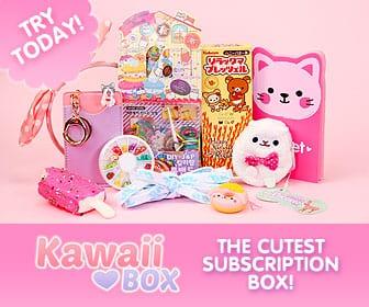Kawaii Box Subscribe Man Vs Pink