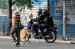 Δελτα εναντίον Λουκάνικου; Η φωτογραφία χρονολογείται από τον Ιούνιο του 2011. Ο σκύλος που απειλείται με κλομπιά είναι πιθανότατα ο θρυλικός Λουκάνικος - η αδέσποτη μασκότ των διαδηλώσεων