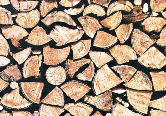 biomasa-bm